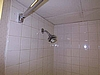 Guestroom Shower Heads